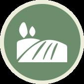 icon-stores